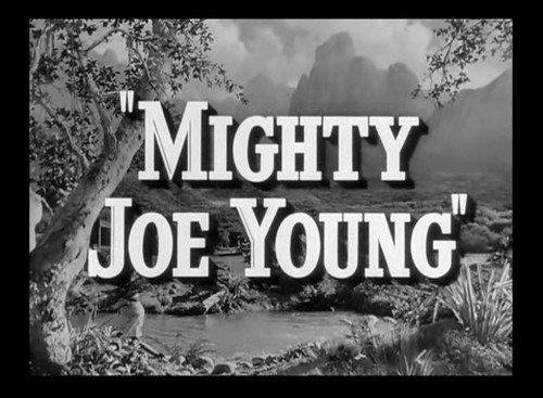 MIGHTY JOE YOUNG (1)