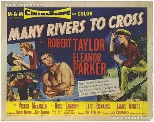 MANY RIVERS TO CROSS FILM POSTER 3