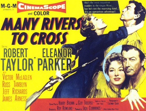 MANY RIVERS TO CROSS FILM POSTER 8