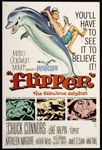 FLIPPER FILM POSTER 1