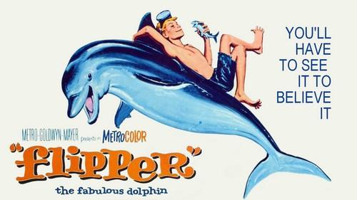 FLIPPER FILM POSTER 2
