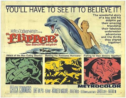FLIPPER FILM POSTER 5
