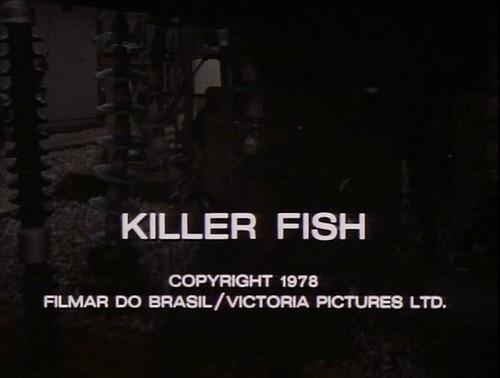 KILLER FISH (8)