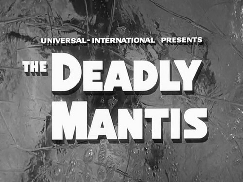 THE DEADLY MANTIS (4)