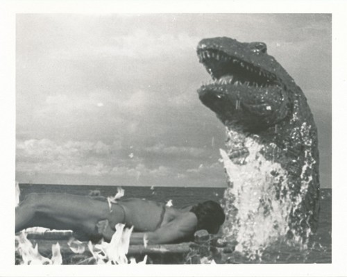 WHEN DINOSAURS RULED THE EARTH(1970) WINDOW CARD 14