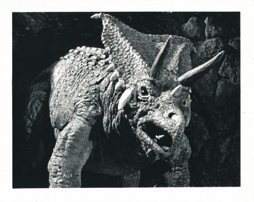 WHEN DINOSAURS RULED THE EARTH(1970) WINDOW CARD 19